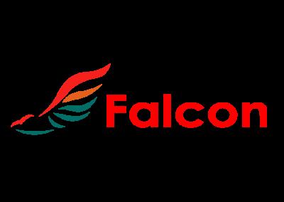 Falcon Fashions